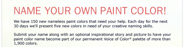 Just For Fun Name Your Own Paint Color Everything